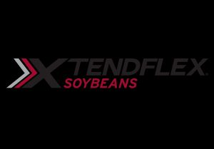 xtend flex soybeans